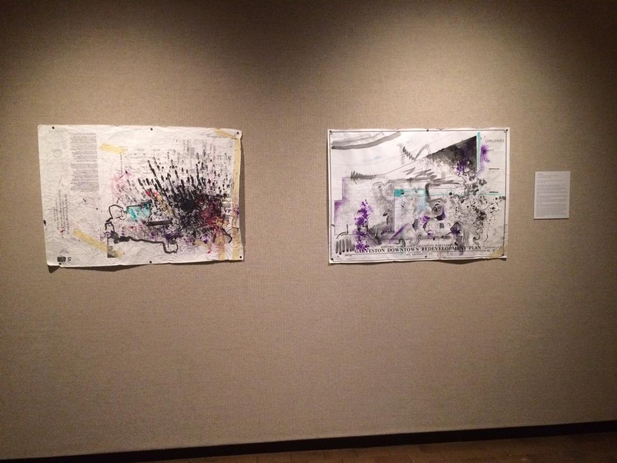 Gentle Terrorist - The AMoA Biennial - 600 Texas 2017